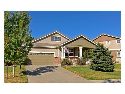 Castle Rock Single Family Home Active: 3932 Miners Candle Drive