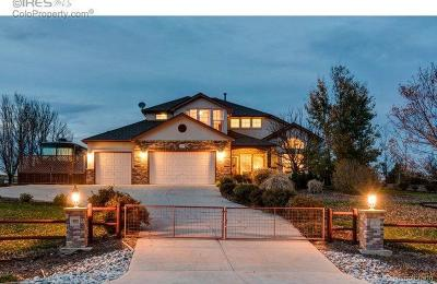 Mead Single Family Home Active: 18265 Wagon Trail