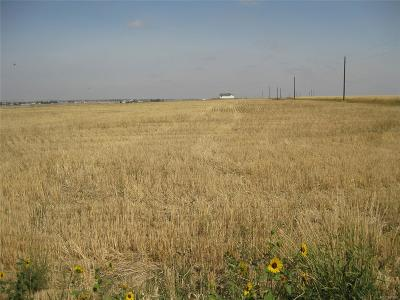 Arapahoe County Residential Lots & Land Under Contract: 1011 South Flandin Court