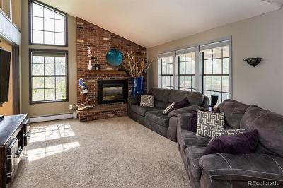 The Pinery Single Family Home Active: 8646 Thunderbird Road