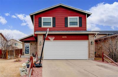 Colorado Springs Single Family Home Active: 4475 Witches Hollow Lane