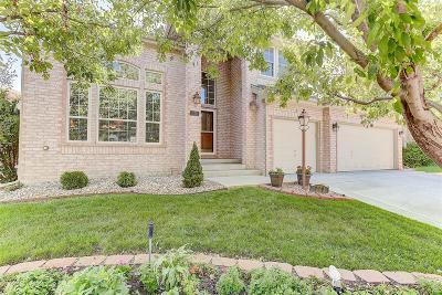 Highlands Ranch Single Family Home Active: 240 Sylvestor Place