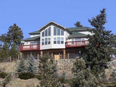 Clear Creek County Single Family Home Active: 1405 Ponderosa Drive