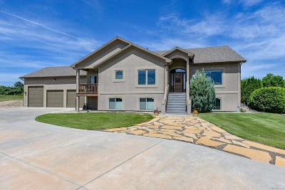 Loveland Single Family Home Active: 27570 Hopi Trail