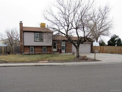 Bennett Single Family Home Under Contract: 640 Centennial Drive
