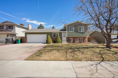 Aurora CO Single Family Home Under Contract: $307,000