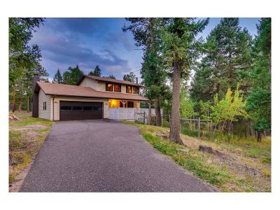 Conifer Single Family Home Active: 30683 Kings Valley Drive
