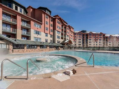 Condo/Townhouse Active: 2300 Mt. Werner Circle #455