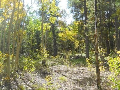 Park County Residential Lots & Land Active: 1299 Deer Trail