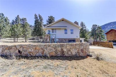 Estes Park Single Family Home Active: 1430 Strong Avenue