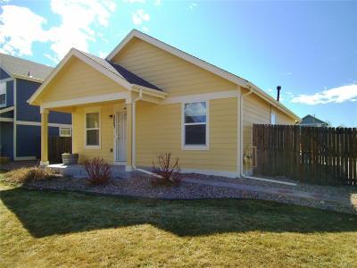 Strasburg Single Family Home Active: 2863 Rose Hill Street