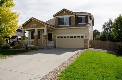 Douglas County Single Family Home Active: 552 Springvale Road