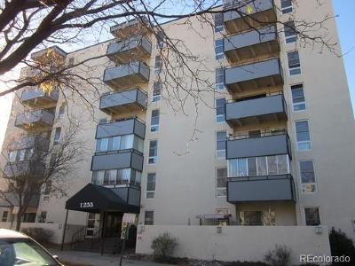 Denver Condo/Townhouse Active: 1255 North Ogden Street #205