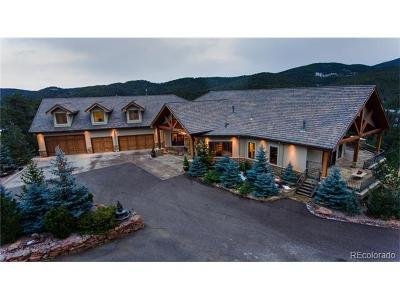 Evergreen Single Family Home Active: 577 Bear Meadow Trail