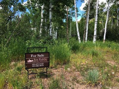 Steamboat Springs Residential Lots & Land Under Contract: 2050 Black Bear Lane Lane