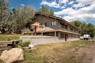 Steamboat Springs Single Family Home Active: 810 Broad Street