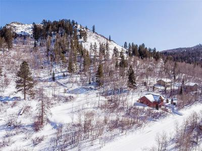 Residential Lots & Land Active: 22690 Snowbird Trail
