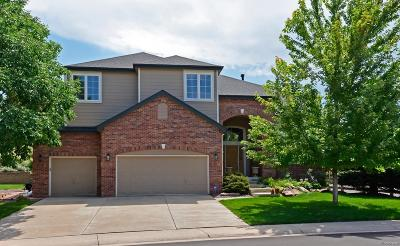 Littleton Single Family Home Under Contract: 6072 Puma Ridge