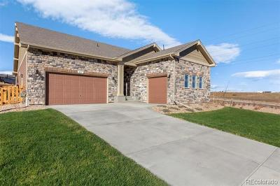 Castle Rock Single Family Home Active: 2011 Pinion Wing Circle