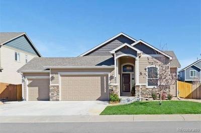 Frederick Single Family Home Under Contract: 9022 Sandpiper Drive
