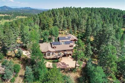 Conifer Single Family Home Active: 12753 Upper Ridge Road