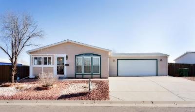 Brighton, Henderson, Hudson, Lochbuie Single Family Home Active: 324 Apache Place