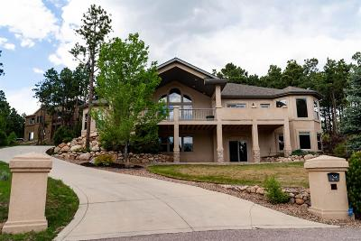 Monument Single Family Home Under Contract: 38 Bridle Creek