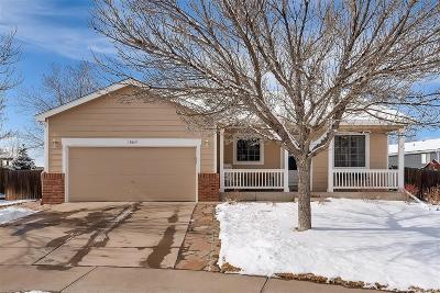 Northglenn Single Family Home Under Contract: 10669 Fillmore Way