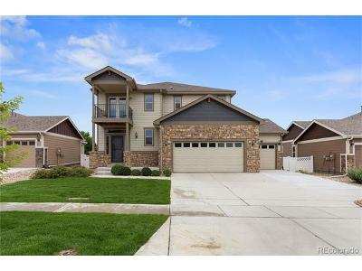 Berthoud Single Family Home Active: 1304 Gateway Park Drive