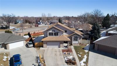 Longmont Single Family Home Active: 1636 Lincoln Court