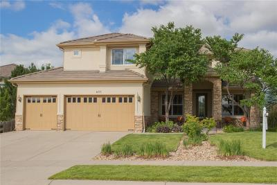 Arvada Single Family Home Active: 6771 Violet Way
