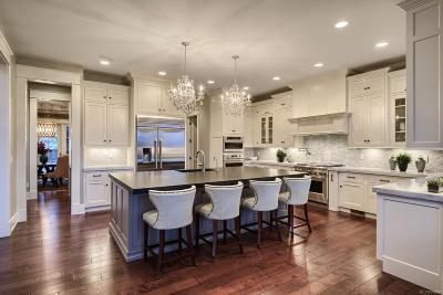 Highlands Ranch Single Family Home Active: 10815 Wintersong Way