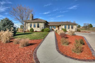Windsor Single Family Home Active: 1017 Montana Court