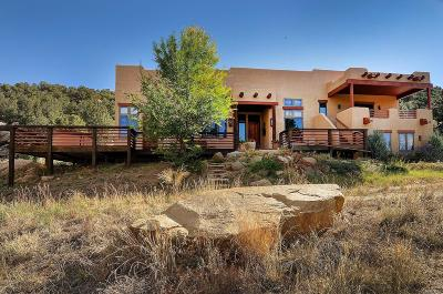 Buena Vista CO Single Family Home Active: $1,390,000