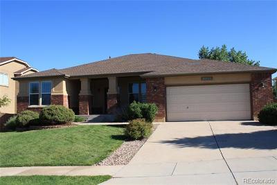 Colorado Springs Single Family Home Active: 10715 Rhinestone Drive