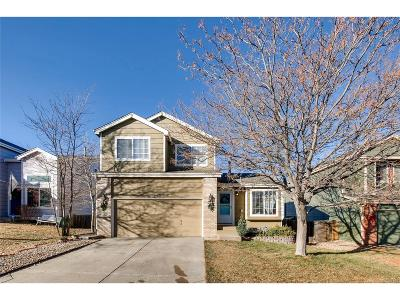 Parker Single Family Home Active: 11261 Rodeo Circle