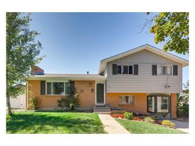 Aurora Single Family Home Active: 965 Dearborn Street
