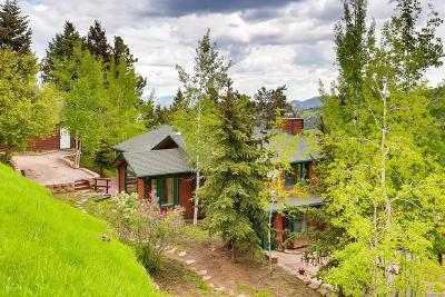 Conifer Single Family Home Under Contract: 9259 Fallen Rock Road