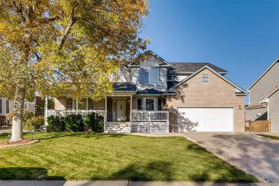 Broomfield Single Family Home Active: 1193 Sunset Drive