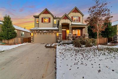 Erie Single Family Home Active: 980 Stanley Court