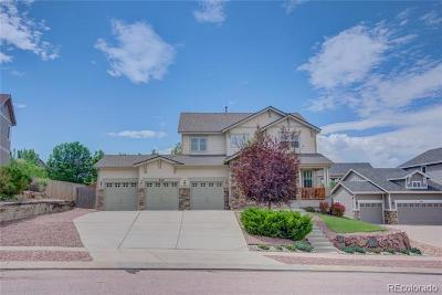 El Paso County Single Family Home Active: 849 Coyote Willow Drive