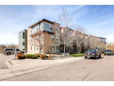Condo/Townhouse Sold: 5201 South Fox Street #206