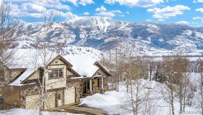 Steamboat Springs Single Family Home Active: 35935 Agate Creek Road