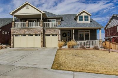 Castle Rock Single Family Home Active: 4073 Ochre Drive