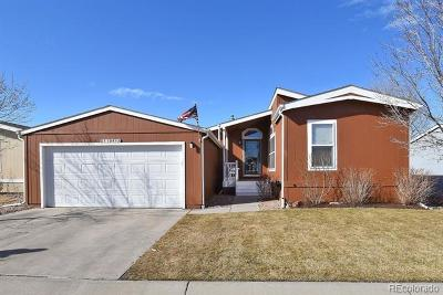 Longmont Single Family Home Under Contract: 11091 Thunderbird #272