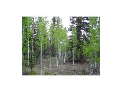 Park County Residential Lots & Land Active: 59 Patch Court