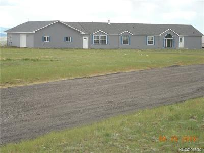 Fairplay Single Family Home Active: 3905 Bare Trail