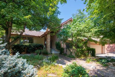 Centennial Single Family Home Under Contract: 7383 South Fillmore Circle