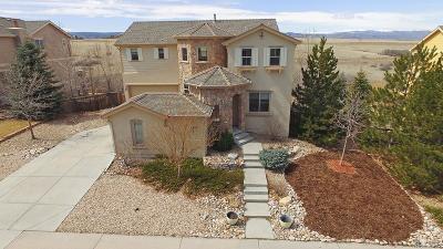Castle Rock Single Family Home Under Contract: 2985 Breezy Lane