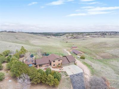 Castle Rock Single Family Home Active: 5205 Willow Creek Road